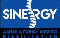 Sinergy Casalmaggiore Logo